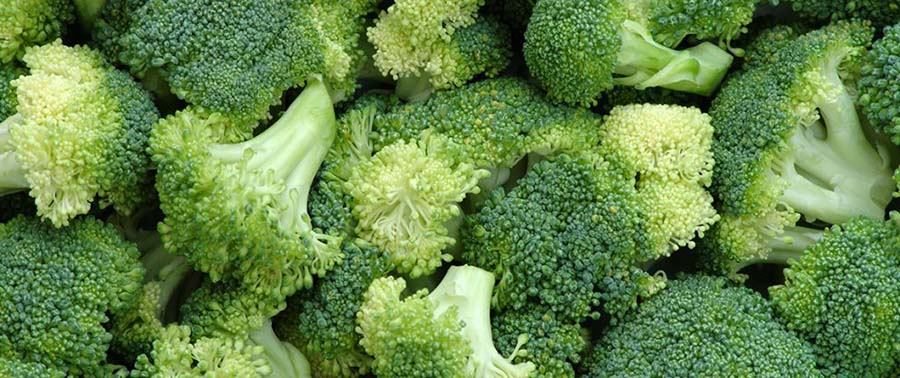 Time to Slap on the BROCCOLI?  Compound in Vegetable Found to Protect Against Sunburn and Skin Cancer