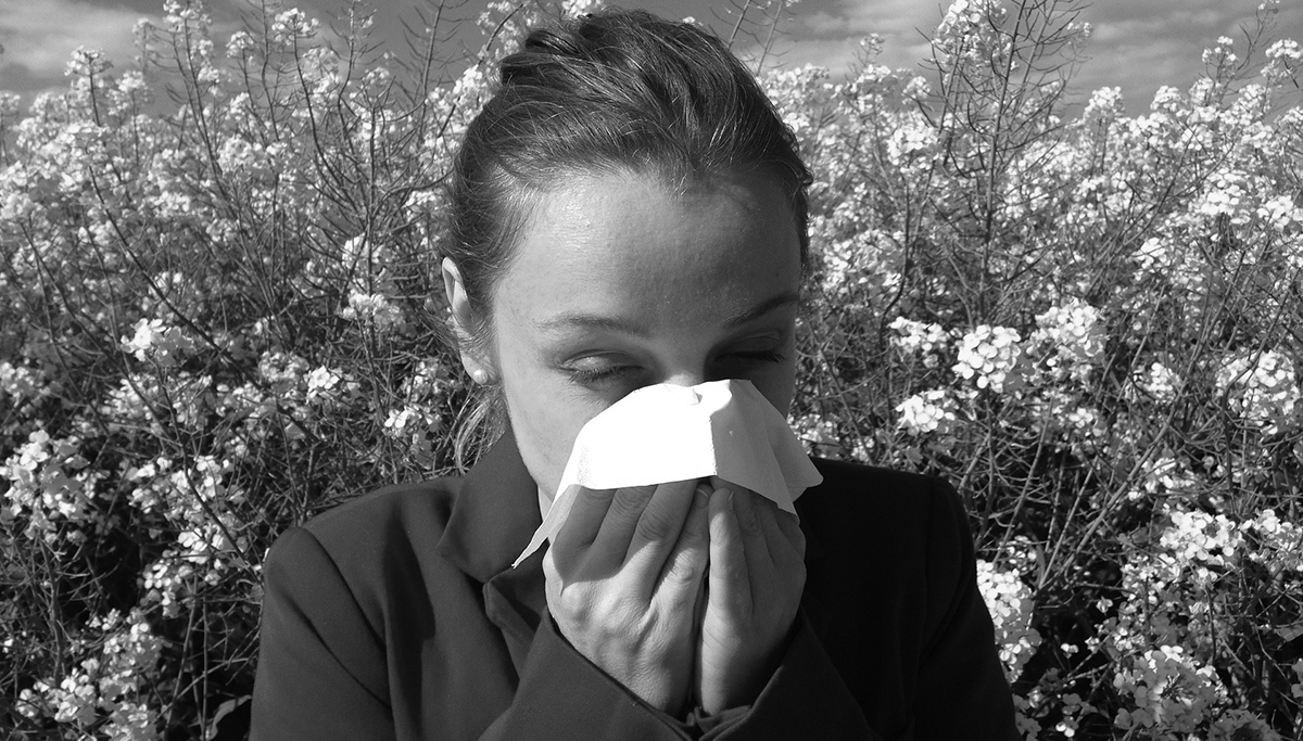 Can Probiotics Help Hay Fever and Other Allergic Conditions?
