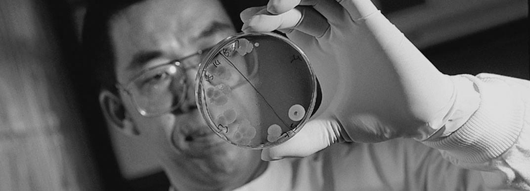 Lab4 Probiotics - The Basics